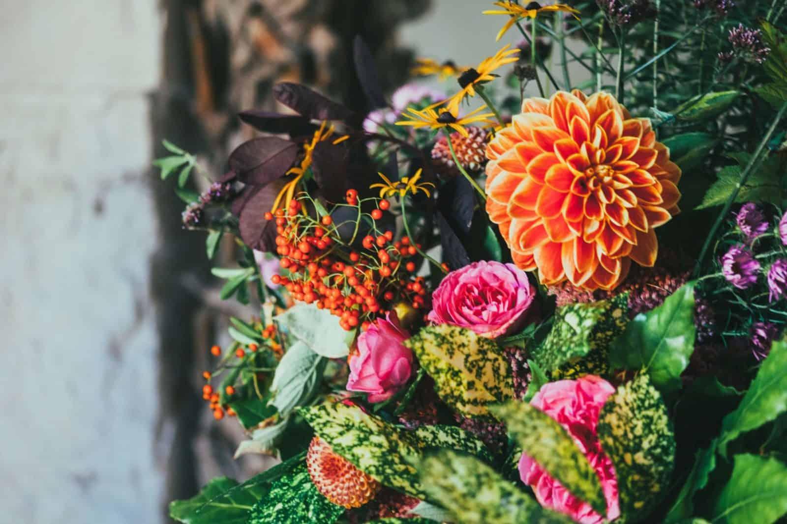 cómo preparar la siembra de flores