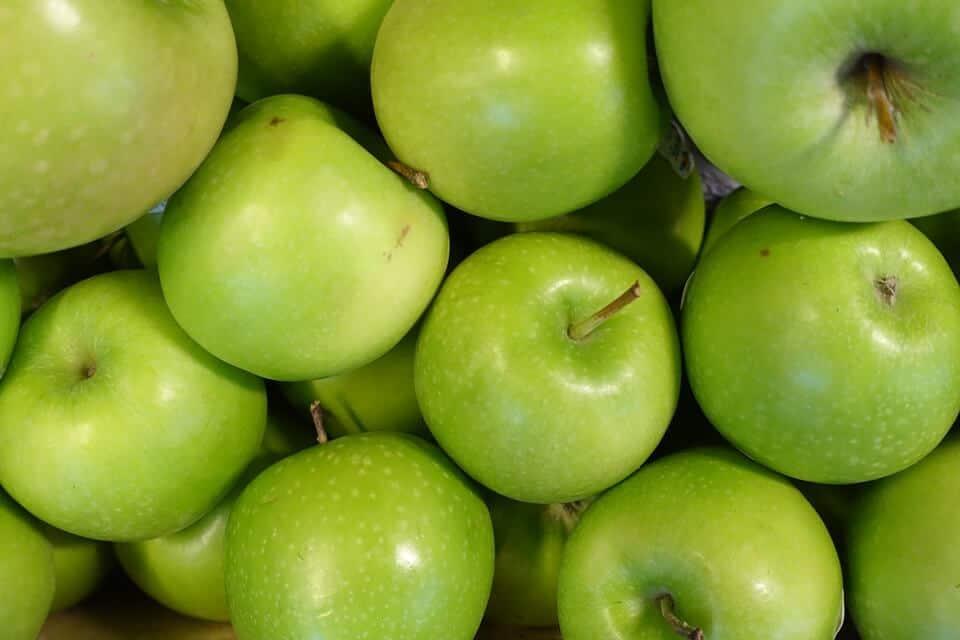 cómo sembrar un manzano