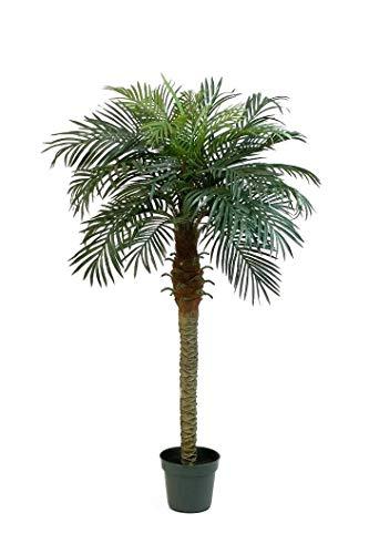 artplants.de Palmera fénix Artificial con 21 frondas, 150cm - Árbol sintético - Palma Decorativa