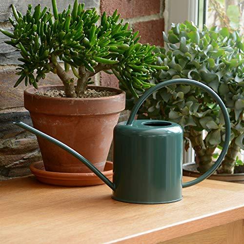 CKB LTD Regadera para interiores de color verde oscuro, 1,4 L, acero galvanizado con recubrimiento en polvo, para plantas de interior, diseño contemporáneo de metal con boquilla estrecha y mango alto (verde oscuro)