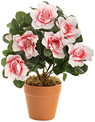 Closer To Nature HBC005PE - Azalea artificial, 27 cm, color rosa
