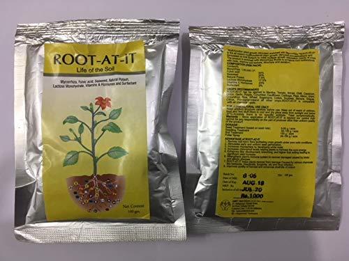 ROOT AT IT Mycorrhiza germinador de Semillas orgánicas aeropónicas hidropónicas de 100 g para 5000 plantletas o Semillas