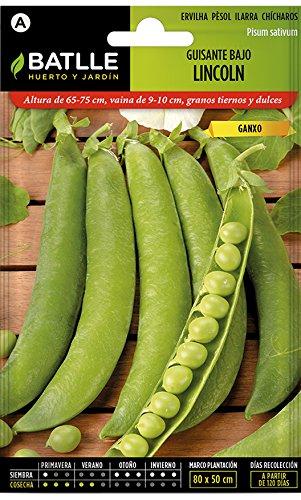 Semillas Leguminosas - Guisante Enano Lincoln  - Batlle