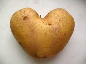 Cómo combatir el virus de la patata