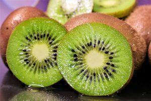 Con qué otras plantas o árboles podemos injertar el esqueje de kiwi