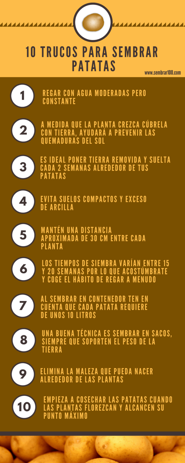 TRUCOS PARA SEMBRAR PATATAS