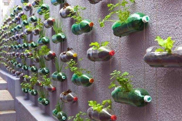 botellas de plástico como macetas