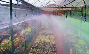 Riego por nebulización