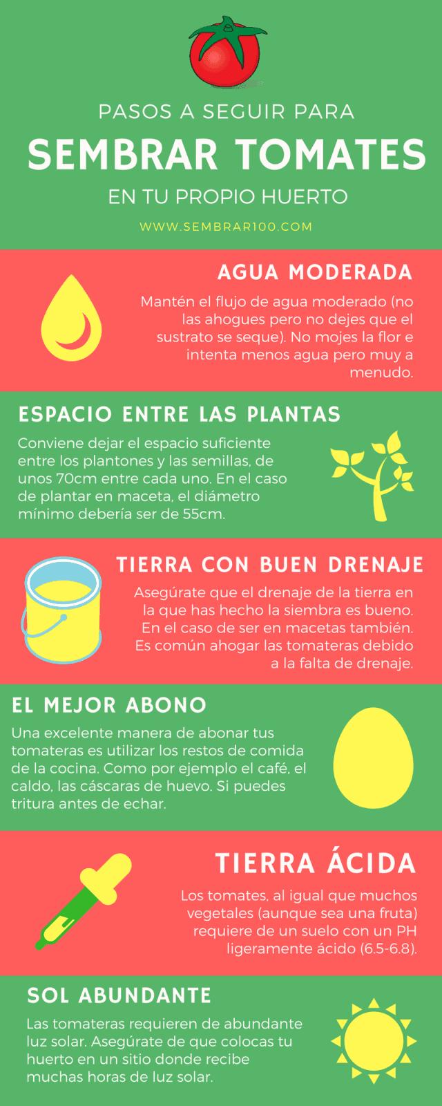 Plantar Tomates En Huerto Gallery Of Huerto Familiar U Sembrar En  ~ Como Cultivar Tomates En El Huerto