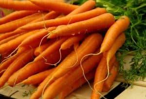 Zanahoria naranja