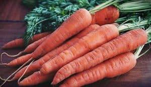 Tipos de zanahorias según su color - Zanahoria roja