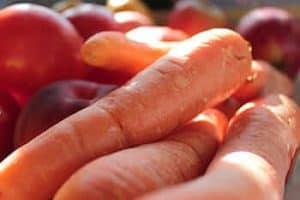 Tipos de zanahorias según sus nombres y regiones - Zanahoria Imperator