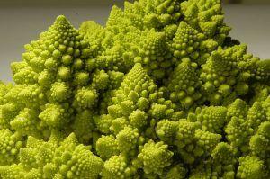 Variedades de Brócoli - Brócoli Romanescu