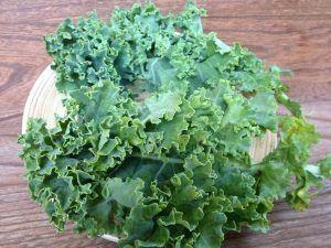 Variedades de Kale - Kale Verde