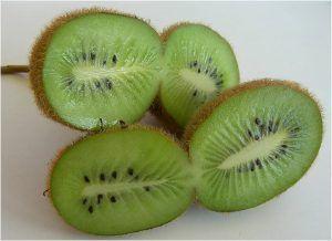 Variedades de Kiwi - Kiwi Monty