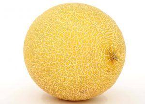Variedades de Melones - Melón Galia
