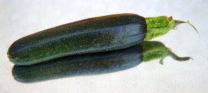 Variedades de calabacín más conocidas - Calabacín verde oscuro