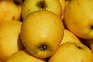 Variedades de manzanas - Golden Delicious
