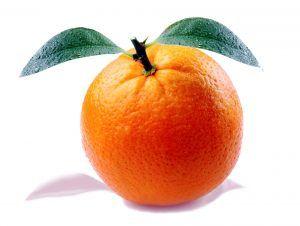 Variedades de naranja - Navelina