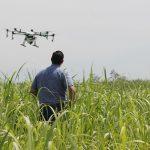 Agricultura de Precisión: [Concepto, Usos, Ejemplos y Beneficios]