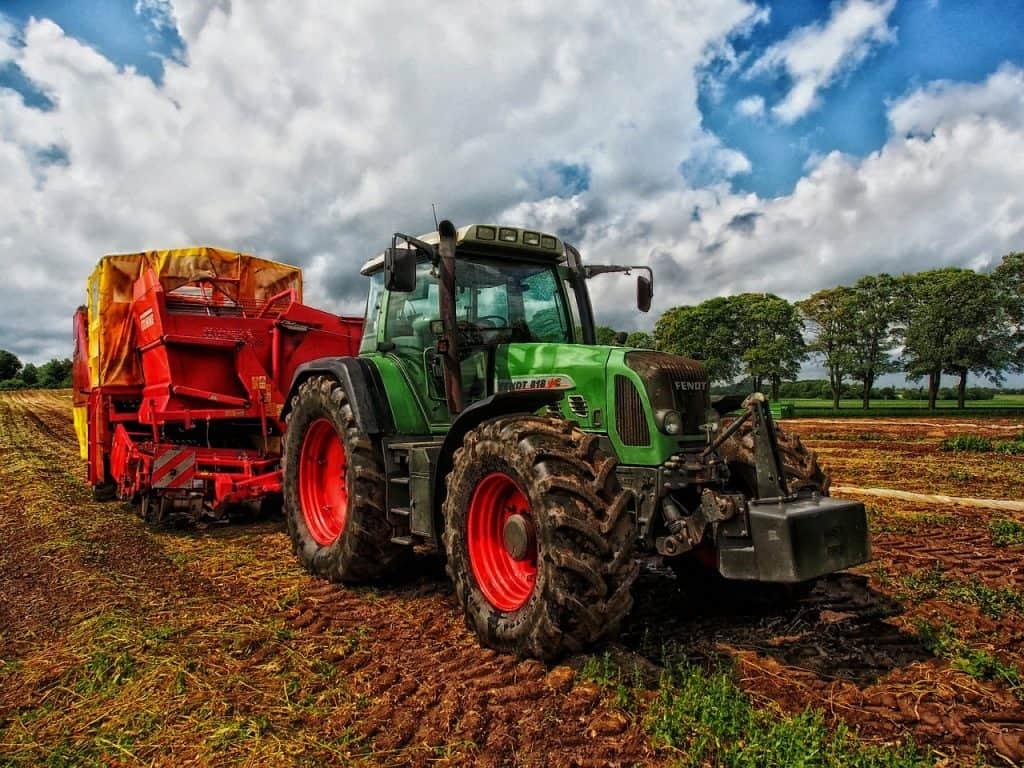 agricultura de subsistencia concepto