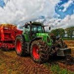Agricultura de Subsistencia: [Concepto, Funcionamiento, Ventajas y Desventajas]