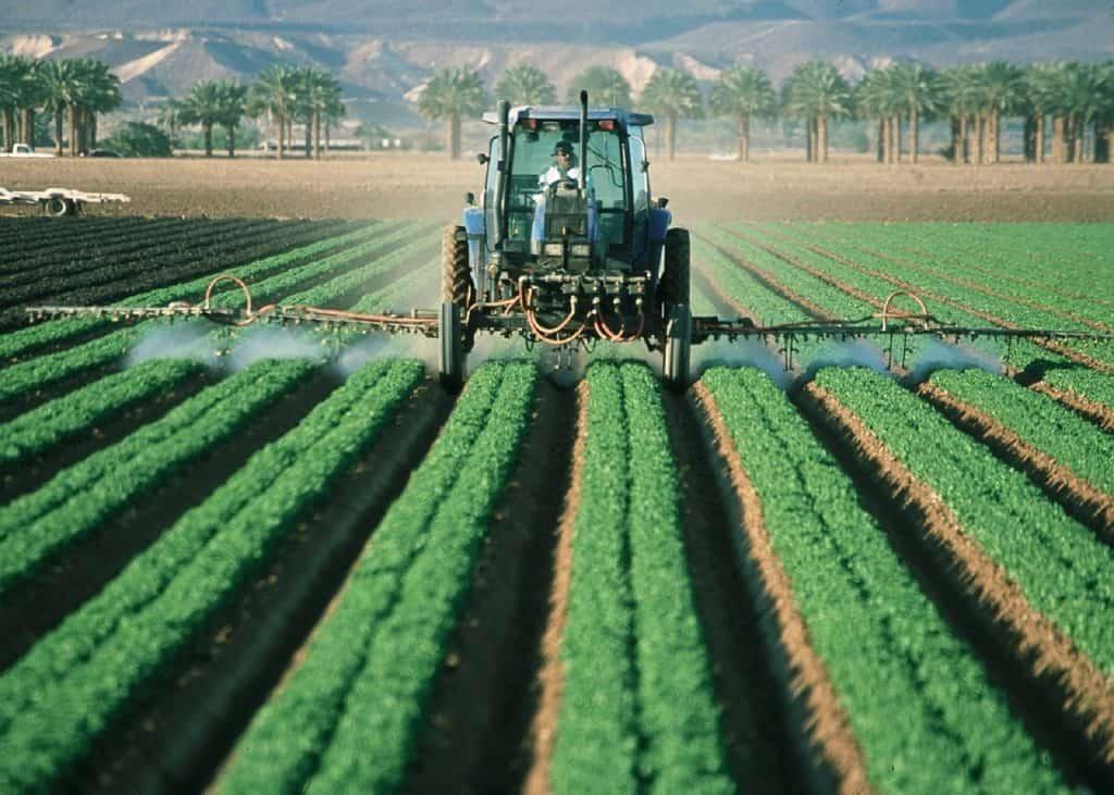 qué es la agricultura de subsistencia