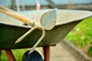 Sembrar arroz y extraer las malas hierbas