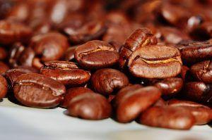 Cómo echar posos de café a las plantas