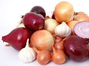 Qué debemos hacer para conservar las cebollas