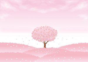 cómo abonar el cerezo