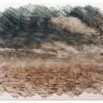 La Deforestación: [Concepto, Causas y Soluciones]