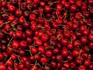 cómo sembrar un cerezo