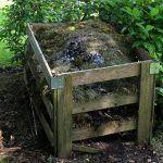Compost: ¿Qué es y Cómo hacer tu propia Composta? [Guía Completa]