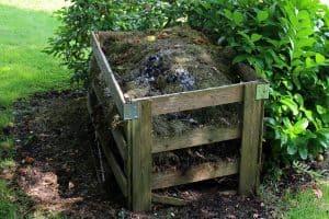 Compost y compostera