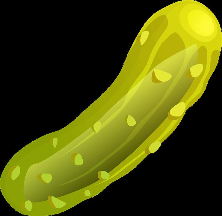 Cómo Sembrar Pepinos en tu propio Huerto: Fácil y en [12 Pasos]