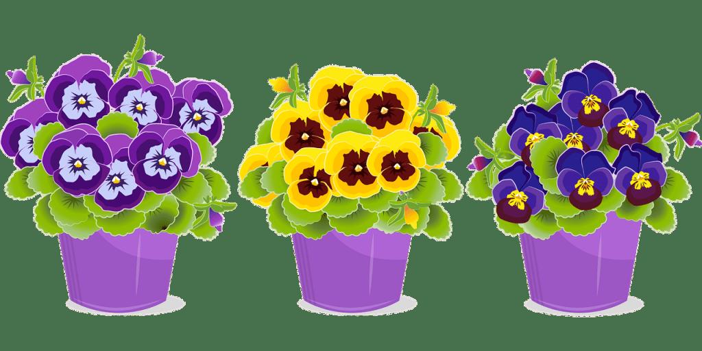 Flor, Pensamiento