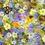 Significado de las Flores de Verano