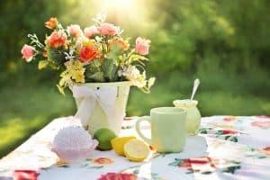 ¿Qué son las flores de verano?