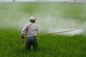 Qué no hacer con los herbicidas
