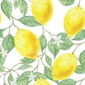 enfermedad hojas amarillas limonero