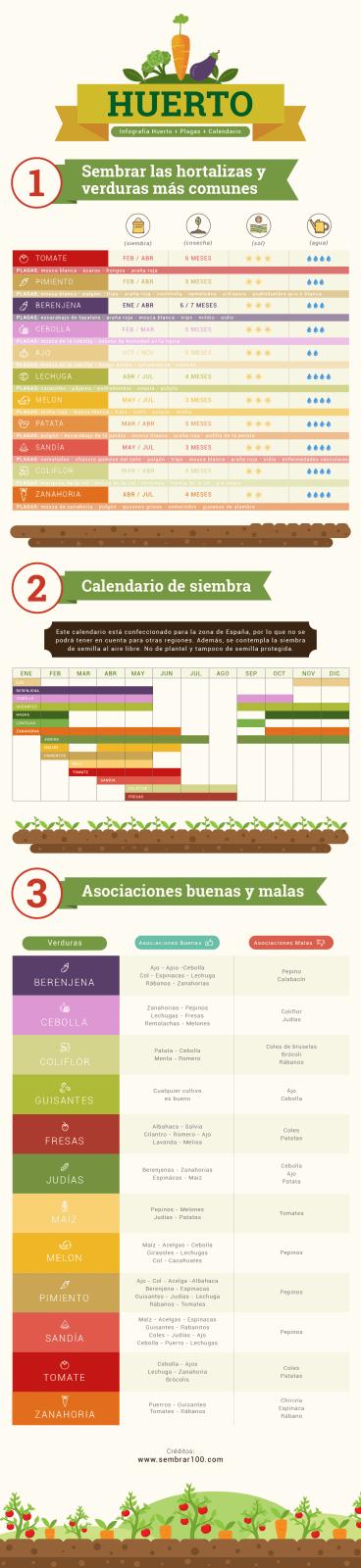 infografía huerto + plagas + calendario