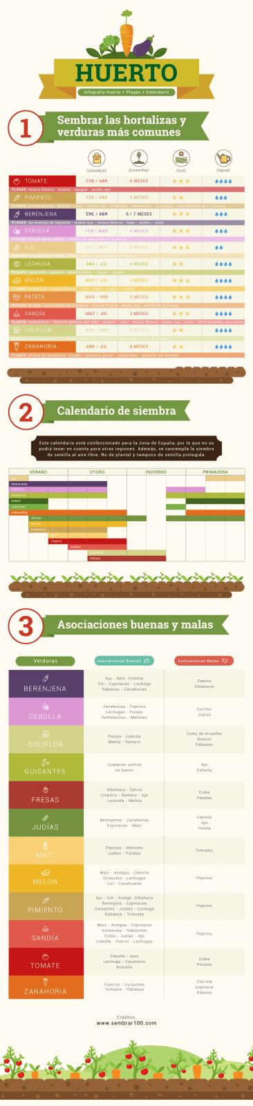 infografia sobre como hacer un huerto urbano