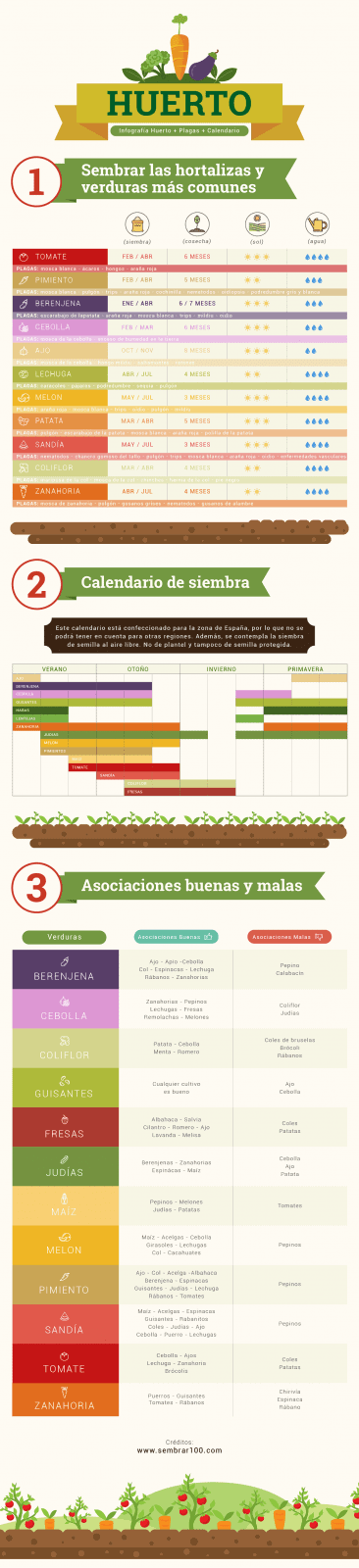 infografía sobre como hacer un huerto