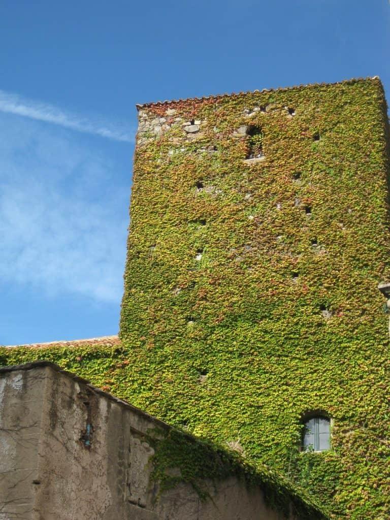 jardín vertical ejemplos