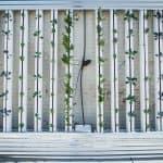 Jardín Vertical: [Guía Completa, Ejemplos y Cómo Hacer el Tuyo]