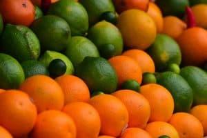 ¿Dónde plantar kumquats?