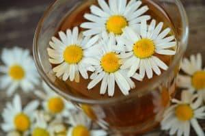 Cómo hacer un remedio casero para tratar el mildiu