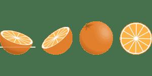 ¿Cómo sembramos un naranjo paso a paso?