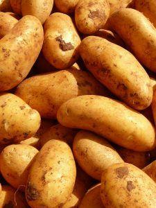 A qué plantas afecta el virus de la patata